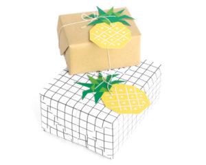 cc_geofruit_tags_pinepple_01-1