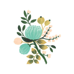 tattly_botanical_robin_web_design_01_grande